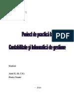 Proiect de Practica La Contabilitate Si Informatica de Gestiune - Societatea Sfera Serv