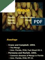 3-4mango