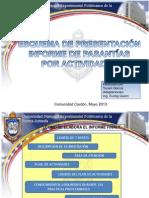 PRESENTACION PASANTÍAS POR ACTIVIDADES2013