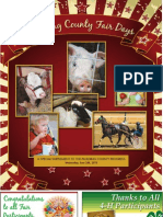 Paulding County Post Fair 2013