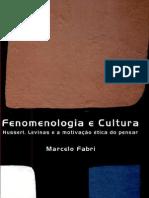 Fenomenologia e Cultura