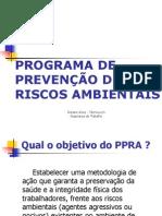 PPRA - apresentação - Diziane Alves