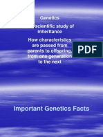 Genetics Facts