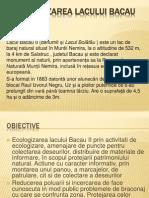 Ecologizarea Lacului Bacau II