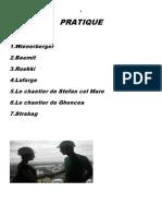 Caiet Practica Razvan Boreico 2