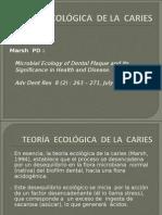 Teoria Ecologica de La Caries