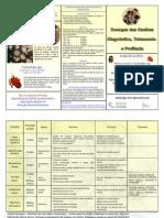 9.Folheto.5.Doenças.das.Abelhas-Diagnóstico.Tratamento.Profilaxia (2)