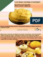 Mamaliga Aliment Romanesc(1)
