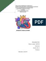 Trabajo de Morfologia Aparato Circulatorio