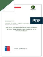Siete Protocolos de Produccion de Plantas R Aysen Vegetativo