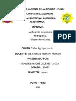 Informe General de Taller Agrop. i (2)