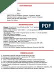 Modelo de Curriculum Vitae.2