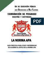 Manual Apa Nueva Version Ceubc