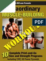 Mass Workouts