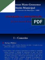 concessao_privatizacao
