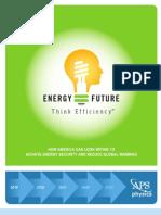2008 APS-Energy Report