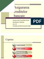 55626930-Asig-Creditelor-Bancare