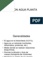 Relacion Agua Planta