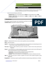 Paisagens Sedimentares - ficha informativa