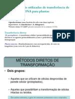 Estratégias mais utilizadas de transferência de DNA para plantas em 14-06-13