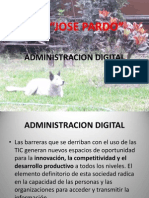 Administracion Digital