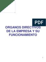 1 Organos Directivos de La Empresa y Su Funcionamiento