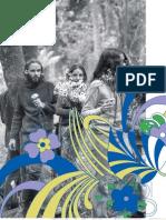 GONÇALO JÚNIOR_Liberdade Cabeluda_O inusitado caráter político da contracultura brasileira_FAPESP_jan_2009