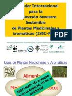 Estandard Internacional Recoleccion Silvestre Pm Power Point