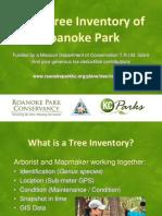 Roanoke Park 2012 Tree Inventory Presentation