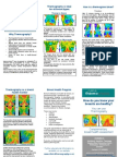 Thermography Brochure