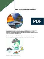 Reportaje sobre la contaminación ambiental