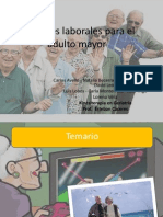Opciones Laborales Para El Adulto Mayor Final(2)
