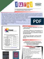 Jornal Prae1