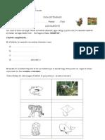 Guia de Trabajo Evaluada Habitats
