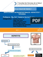 Hepatitis Completo