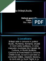 Comuna Brăeşti,Buzău