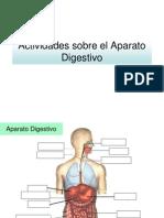 Actividades Sobre El Aparato Digestivo