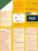 Folder Final (1)