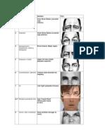 Resumen Unidades de Acción Facial (UAs) de Ekman