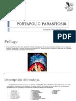 Portafolio Final