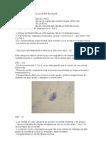 Normalidad de Celulas Epiteliales