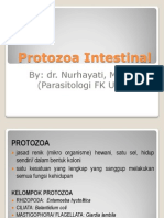 Protozoa Intestinal