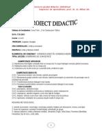 Proiect Didactic Vorbirea Directa Indirecta Georgiana