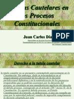 Medidas Cautelares en los Procesos Constitucionales