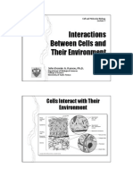 Cell Interaction