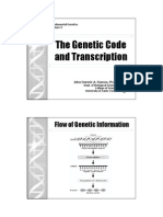 Gene Lecture 11 Transcription