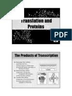 Gene Lecture 12 Translation