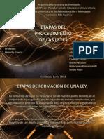 Diapositivas heimily garcia etapas del procedimiento de las leyes expò