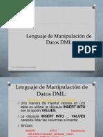 DML ParteI (1)