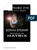 The Third Eye - Amministratore
